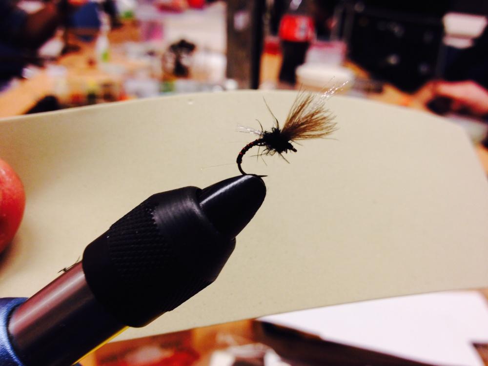 ble flere mygg klekkere