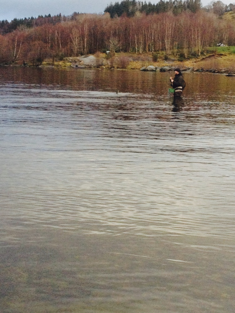 Kjetil kjører fisk:)