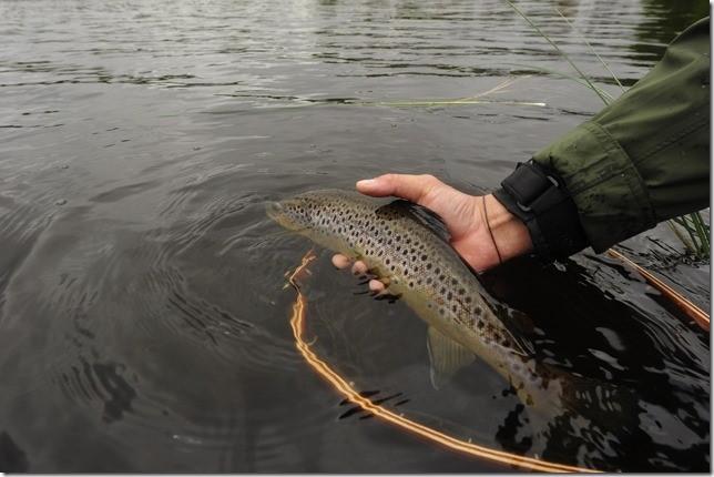 jakt og fiske 7