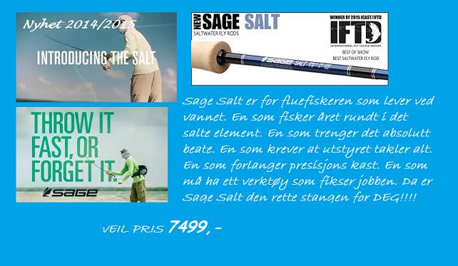 sage salt banner salg